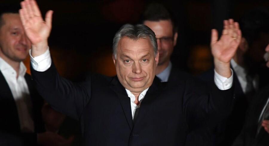 Den genvalgte ungarske premierminister gør klar til forbyde organisationer, der støtter migration. / AFP PHOTO / ATTILA KISBENEDEK