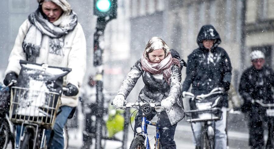 Cyklister cykler i snevejr i København.