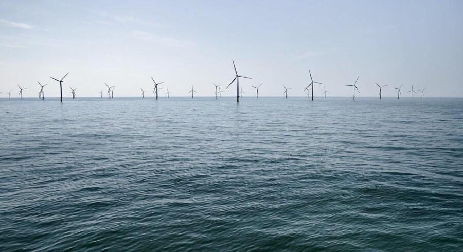 Arkivfoto: Vindmølleparken Horns Rev 2 med 91 vindmøller og en transformerstation ejet af Dong fotograferet fredag den 3. juni 2016 i Nordsøen ud for Esbjerg.. (Foto: Mathias Løvgreen Bojesen/Scanpix 2016)