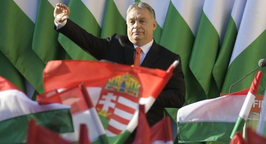 Han tordner mod migranter og skyder med skarpt efter Bruxelles. Søndag kan Ungarns Viktor Orban genvinde magten i Ungarn, som han har forandret grundlæggende i sine otte seneste år ved magten.