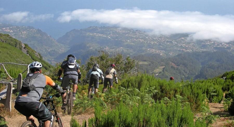De kan deres kram, cykelguiderne, og er gode til at finde det rette sted på øen, afhængig af vejrforholdene, der er vældig omskiftelige på Madeira. Foto: Turismo da Madeira