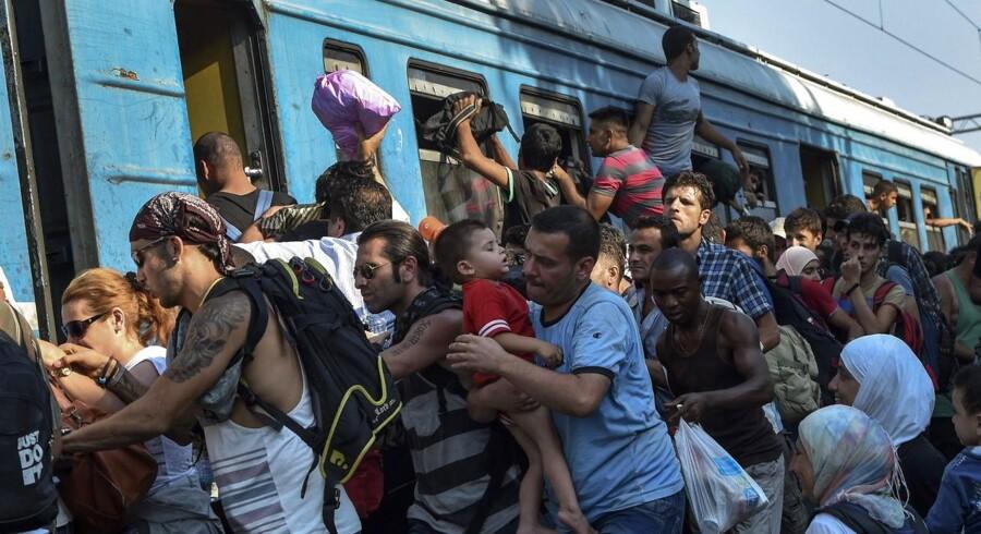 Flygtninge forsøger desperat at komme om bord på toget, der kører fra Gevgelija i Makedonia, mod den Serbiske grænse.
