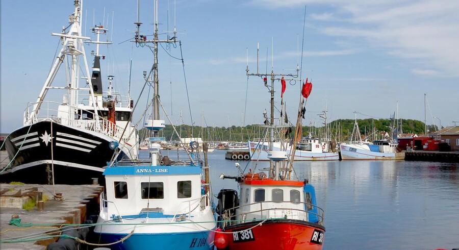 Fiskeriforening mener, at retssag er eksempel på, at de juridiske kvaler dræner fiskerierhvervet i Danmark. (Foto: Torben Christensen/Scanpix 2016)