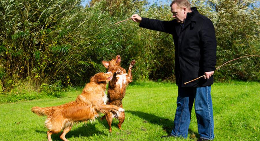 V-formand Lars Løkke Rasmussen skal – ud over hundeluftningen – få sit parti på banen og give regeringen et nap med i bestræbelserne på at få gang i Danmarks økonomi i stedet for at beskyde »kickstartens« kortsigtede konsekvenser, mener erhvervs- og vækstministeren.