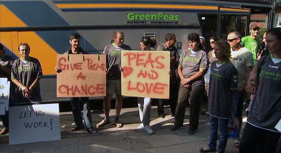 ?Det var den omvendte verden, da rumænske ærteplukkere i sommer lånte deres arbejdsgivers bus for at køre til Nyborg og protestere mod fagforeningen 3F. Arkivfoto: ?Mogens Zender