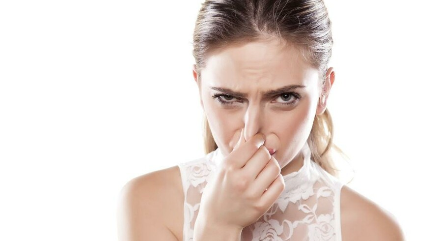 Det kan godt være, at det ikke lugter lige godt over alt, men lugte betyder ekstra dimentioner til vores oplevelse af omgivelserne.
