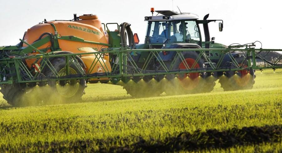 Dansk landbrug har været for optimistiske i vurderingen af, hvor meget man har reduceret udledningen af drivhusgasser