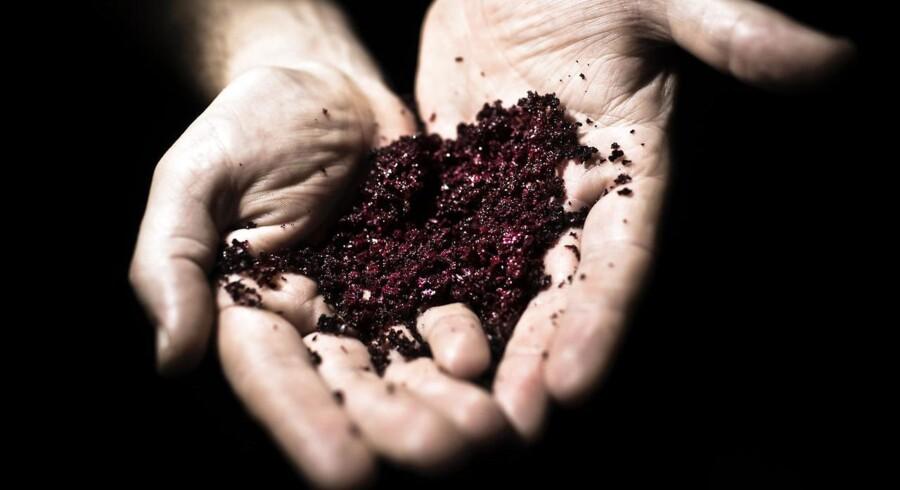 Kok John Greany og køkkenchef Anders Busk, Tivolihallen, er to iværksættere, som forsker i grøngsagskrystaller - en måde at udnytte restprodukter af grøntsager på ved en ny form for tørringsproces. John Greany og Anders Busk udvikler de nye krystaller og skal nu samarbejde med Københanvs Universitet.