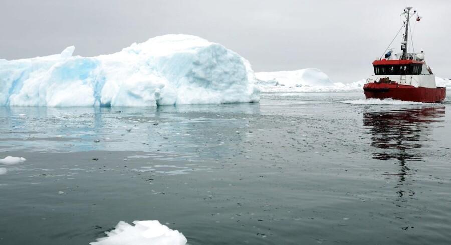 Store olieselskaber advares mod boringer på følsomme naturegne som Grønland.