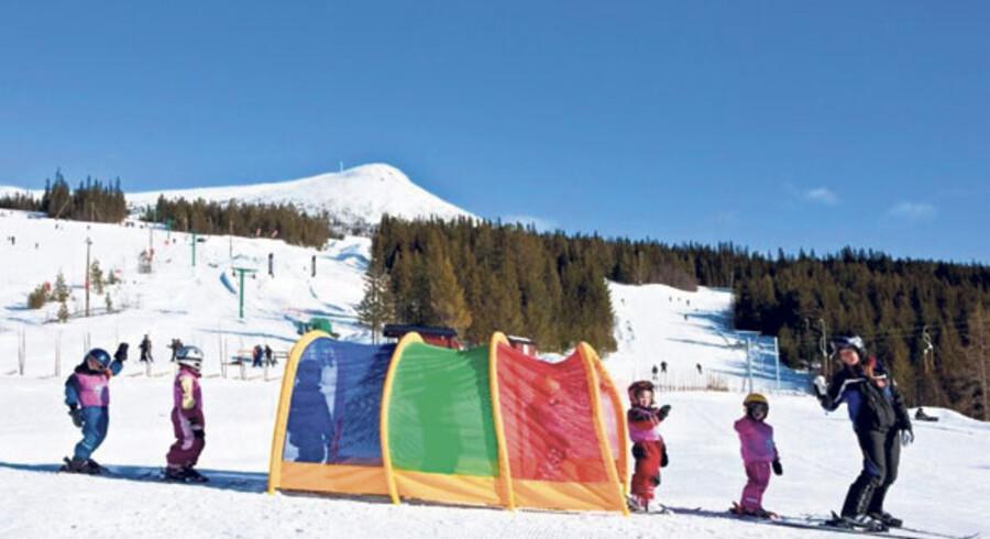 Lofsdalen er et meget børnevenligt område, her kører børnene på skiskole gennem den farvede tunnel.
