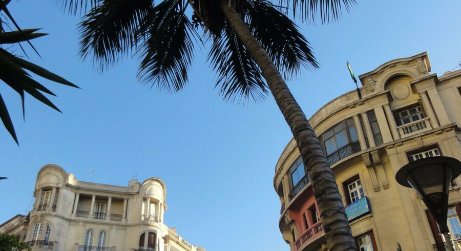 Palmer og franske arkitekter i Casablanca.