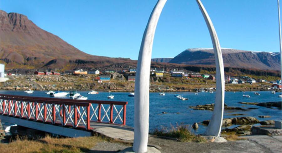 Portal af en hvals kæbe. Foto: Jan Hedegaard