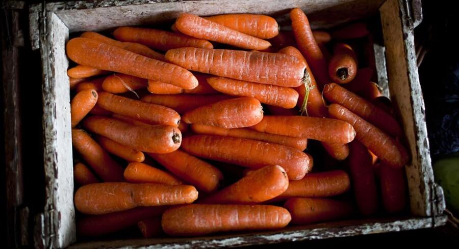 Undersøgelsen fra Aarhus og tilsvarende internationale studier viser, at fødevarer som nødder og gulerødder er langt den hyppigste årsag til fremmedlegemer i lungerne hos børn under tre år.