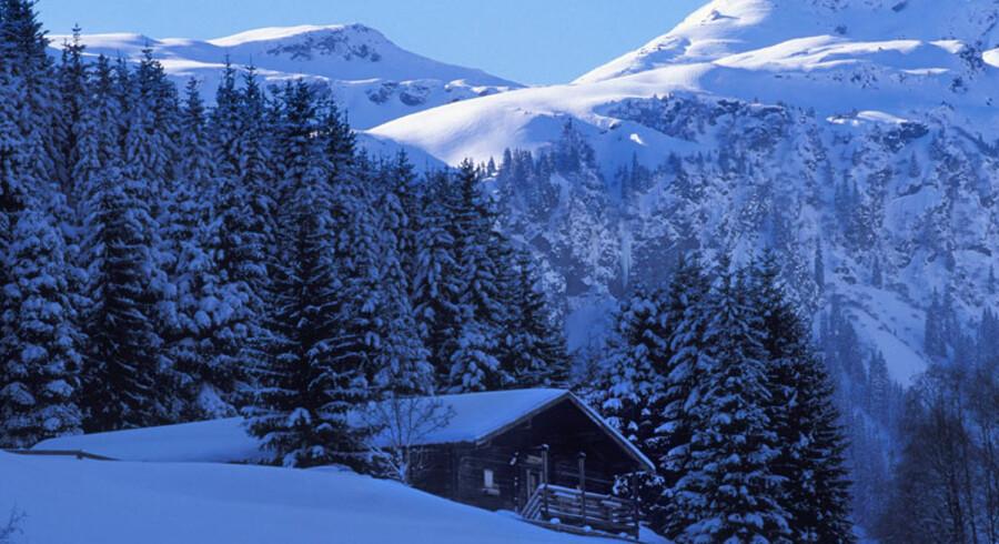 Med 200 kilometer pister, der alle er forbundne, er Saalbach det skiområde i Østrig, der har det største sammenhængende net.