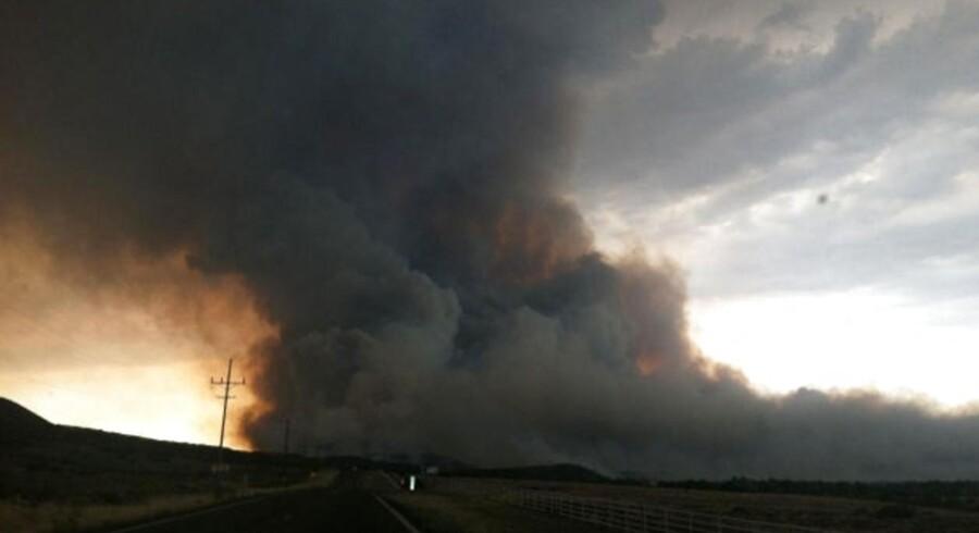 Befolkningen i det sydvestlige USA gisper fortsat under en hedebølge, der er på nippet til at sætte historisk varmerekord. Tørken er skyld i, at der nemt opstår skovbrande, som den der forleden kostede 19 brandfolk livet i Arizona.