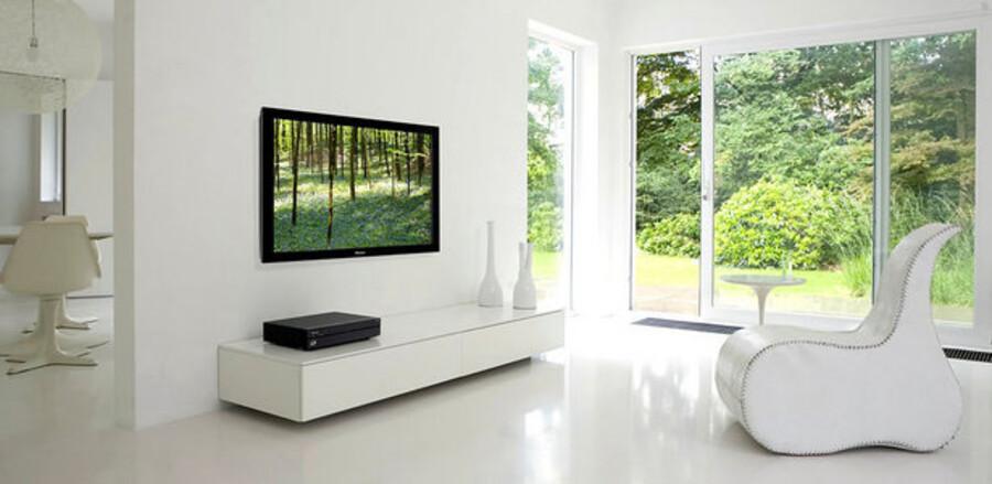 I flere og flere danske hjem hænger der en eller flere fladskærme