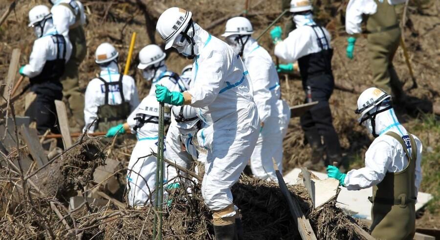 Eftersøgninger af omkomne fra jordskælvet og tsunamien fortsætter dybt inde i den afspærrede strålingszone. Strålingen er for høj til alm. beboelse.