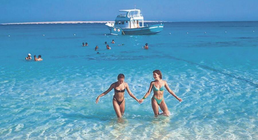 Solsikker ferie og masser af gode dykkemuligheder lokker danskerne til Egyptens sol.