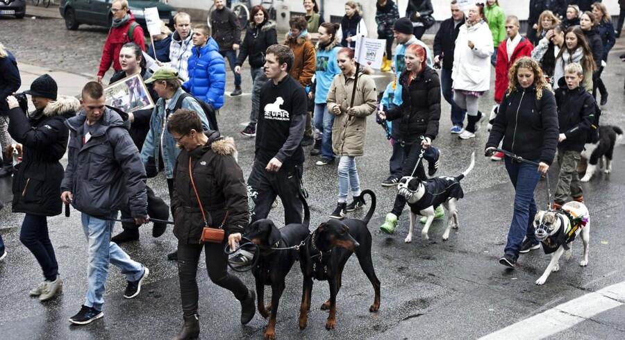 Flere tusinde demonstrerede søndag d.13.oktober 2013 imod den omstridte hundelov. De mener, at alt for mange hunde er blevet aflivet, siden loven trådte i kraft i 2010.