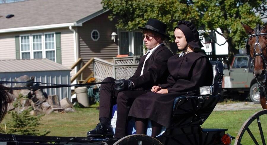 Amish-folket oplever lige nu en eksplosiv vækst, viser ny undersøgelse.