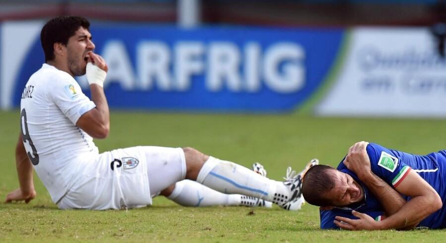 Luis Suarez tager sig til munden efter nærkampen med Giorgio Chiellini, som prøvede at vise, at han var blevet bidt i skulderen. AFP PHOTO/ JAVIER SORIANO