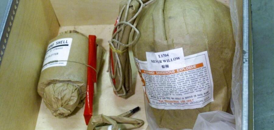 Krysantemumbomber er dødselsfarlige i de forkerte hænder.