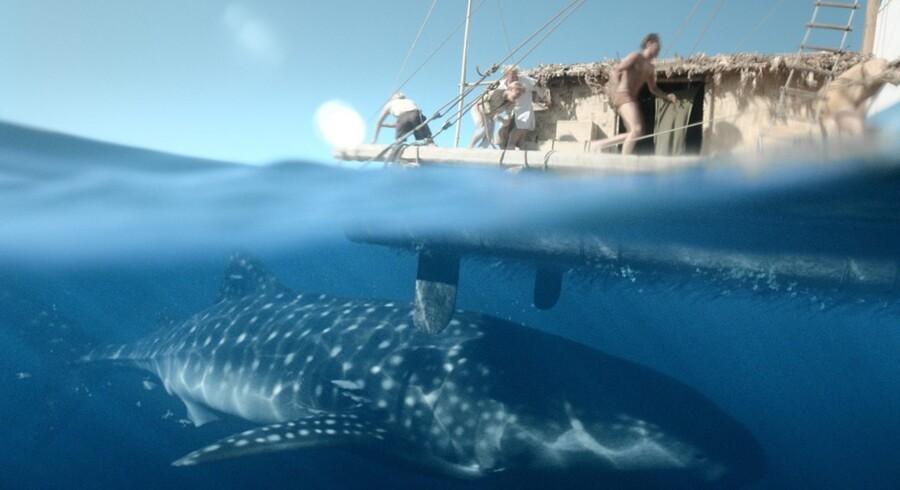 På sørejsen fra Peru til Polynesien er tømmerflåden i filmen som i virkeligheden, af rigtigt træ.