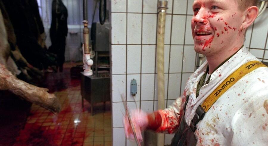 ARKIVFOTO. En slagtersvend sliber sin kniv. Foto: JAKOB DALL