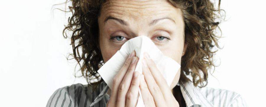 Influenzaramte medarbejdere i hobetal er ikke noget, der bekymrer danske virksomhedsledere.