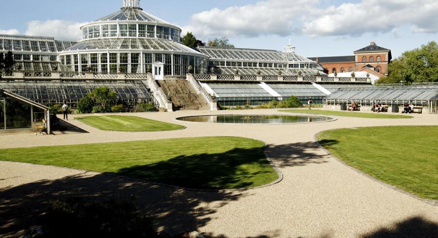 Botanisk Have i København er blevet renoveret for 17 millioner kroner og har blandt andet fået flere rekreative områder og et formidlingsdrivhus.