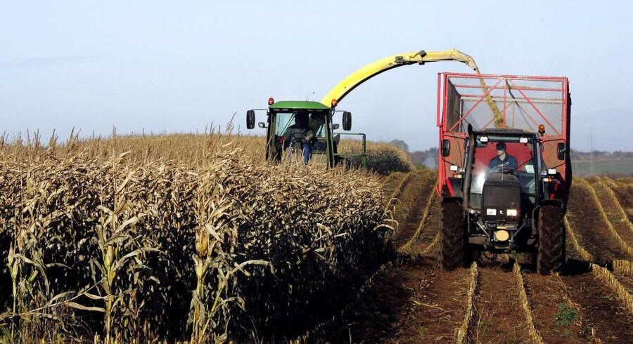 ARKIVFOTO. Mere end hver femte landmand er i dag over 64 år.