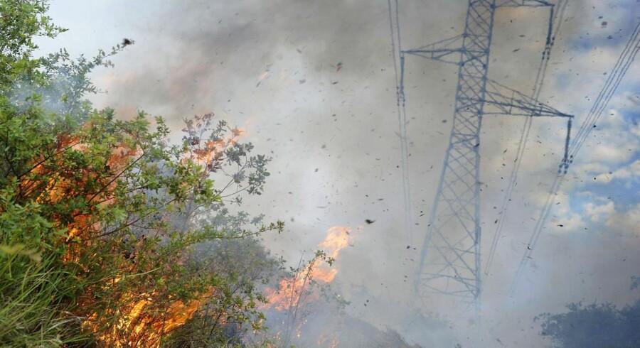 Dansk europaparlamentarikere frygter, at CO2-kvotesystemet kan bryde sammen. Her illustreret med et arkivfoto fra en skovbrand i Spanien.