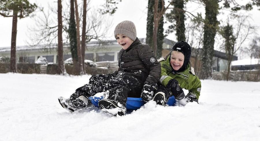 Det har væltet ned med sne over Aalborg natten til lørdag. Sådan så der ud lørdag formiddag - og sneen skabte hurtigt glæde hos børn og voksne.