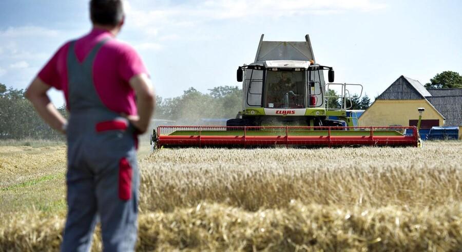 De danske landmænd kan risikere at miste 1,65 milliarder kroner i årlig støtte fra EU.