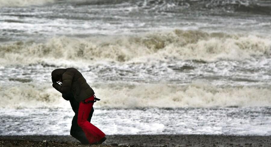 Den første efterårsstorm rammer sandsynligvis den jyske vestkyst mandag. - Arkivfoto