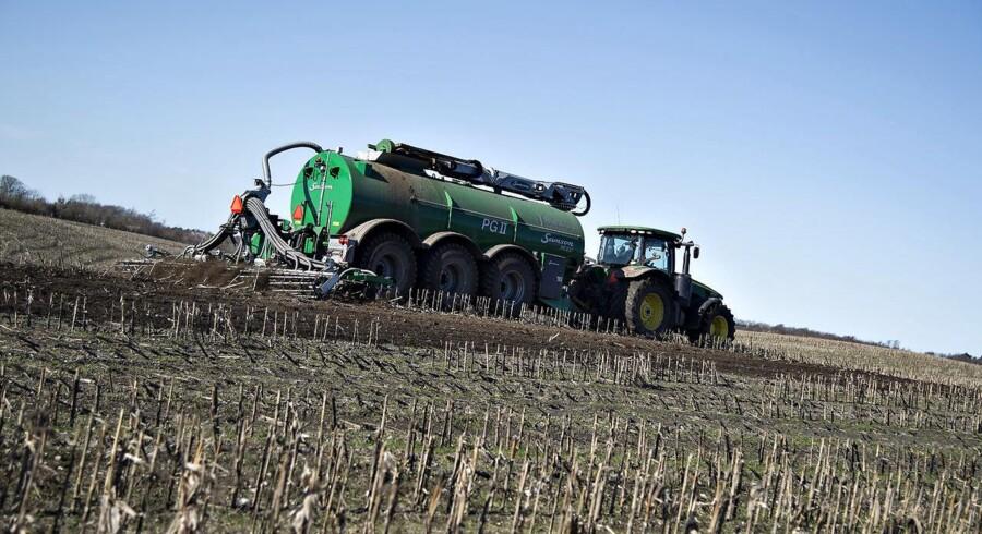 Landbrugskunderne fylder meget i Lollands Bank, hvor landbrugsudlån udgør 13,5 pct. af al udlån.