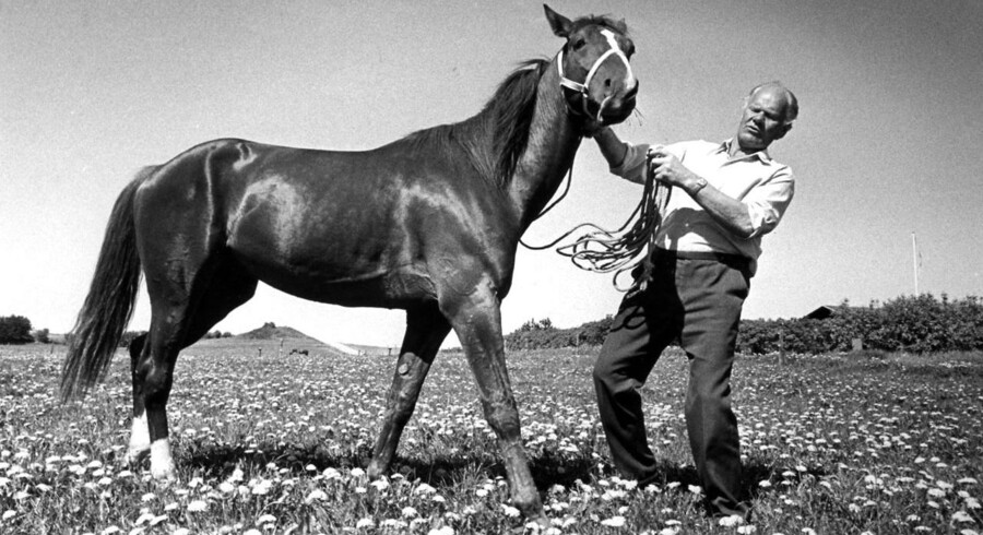 Danmarks mest berømte travhest Tarok sammen med ejeren Karl Laursen, 1977. Filmen om den får tre stjerner fra Berlingskes anmelder.