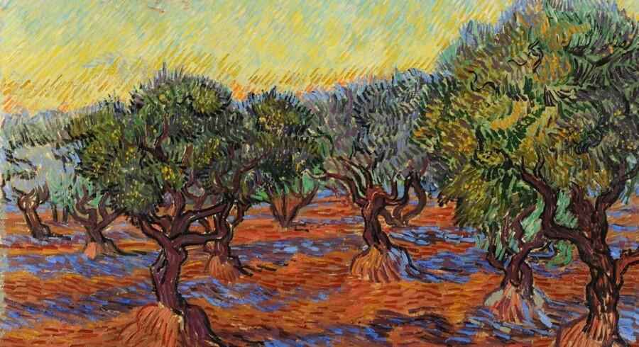 Vincent van Gogh holdt fast i virkeligheden. Dette maleri – et af de imponerende mange lån Ordrupgaard har opnået fra van Gogh-museet i Amsterdam – fra 1889 hedder »Olivenlund«. Foto: Ordrupgaard.