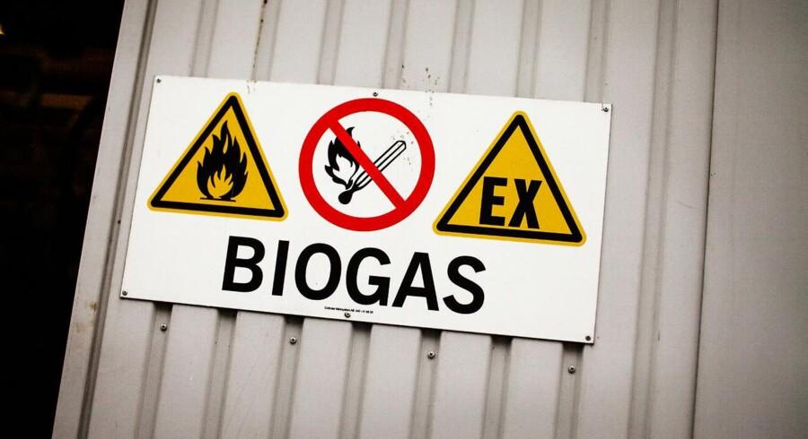 Biogas har et stort uudnyttet potentiale i Danmark. Mange typer affaldsprodukter og et veludbygget ledningsnet for gas er allerede til stede.