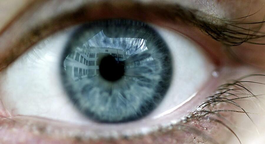 Britiske forskere har skabt håb om, at blinde og svagtseende kan få dele af synet tilbage ved, at stamceller sprøjtes ind i øjets nethinde. Arkivfoto: Christian Als