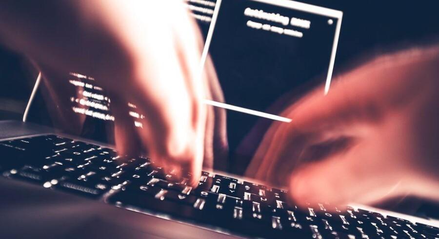 Både myndigheder og danske virksomheder er i fremmede hackeres søgelys, vurderer Forsvarets Efterretningstjeneste. Arkivfoto: Iris/Scanpix