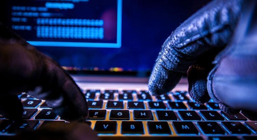 Hver måned overtager hackere flere hundrede danske netadresser, men i maj er det hidtil laveste antal faldet i hackerhænder. Arkivfoto: Iris/Scanpix