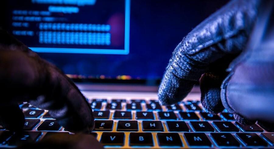 Hackere overtog i marts 815 danske netadresser og skiftede indholdet ud. Arkivfoto: Iris/Scanpix