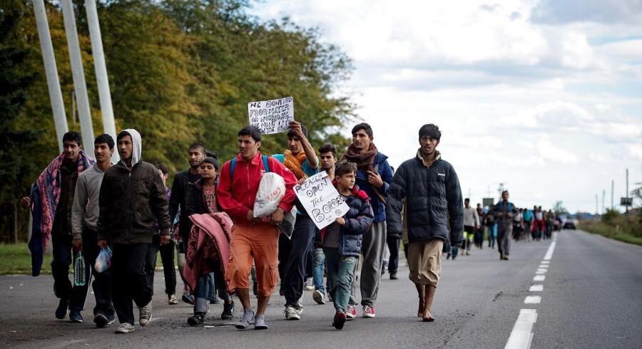 Her ses migranter, muligvis flygtninge, på vej fra Serbien mod Ungarn 4. oktober. AFP PHOTO / ANDREJ ISAKOVIC