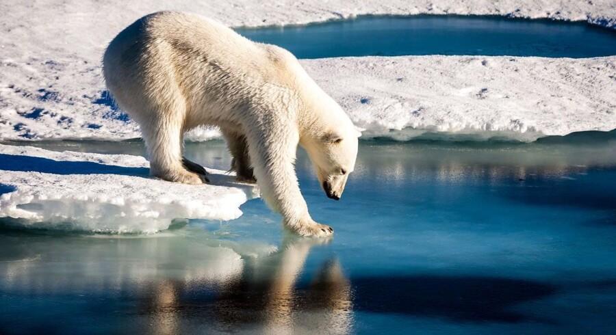 Der er nu ikke nogen tvivl længere, siger forskere: Den globale opvarmning er menneskeskabt og har store indvirkninger på vejret og vindsystemerne.