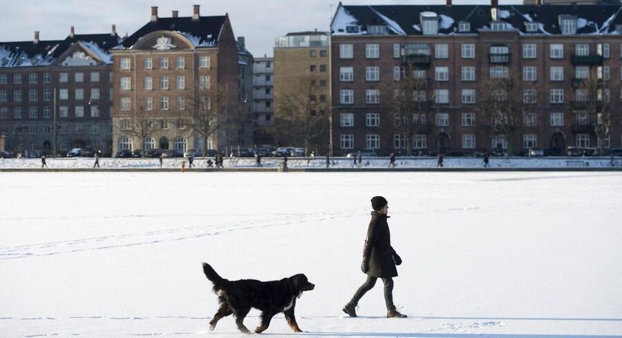Det er forbundet med livsfare at bevæge sig ud på Københavns søer, for isen er langtfra tyk nok til at bære, lyder det fra Københavns Kommune. Billederne er fra den 17. januar 2016, hvor fristelsen blev for stor for mange. (Foto: Bax Lindhardt/Scanpix 2016)