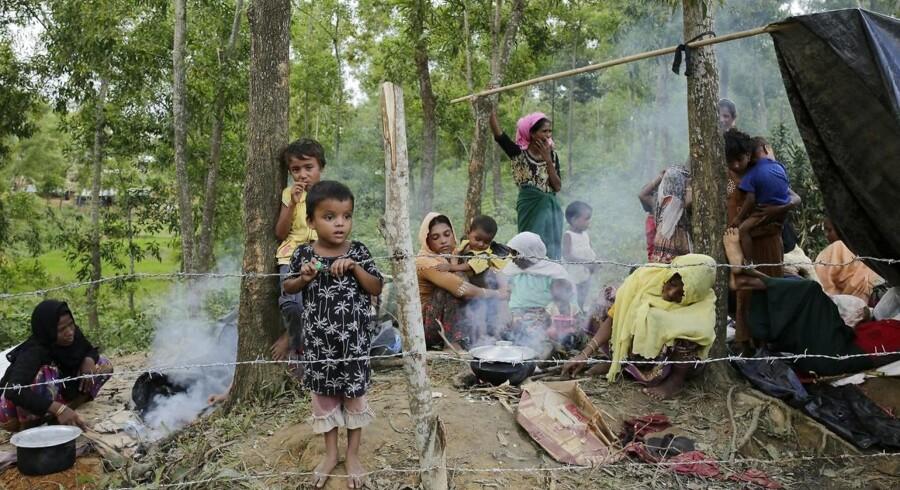 Over 300 000 muslimer er blevet drevet på flugt fra Myanmar, hvor flertallet er buddhister. Landet ledes af Aung San Suu Kyi, der har modtaget Nobels fredspris, men nu kritiseres stærkt, for ikke at i tilstrækkelig grad at have grebet ind over for forfølgelsen af det muslimske mindretal, der er blevet beskrevet som »et skoleeksempel på etnisk udrensning«.