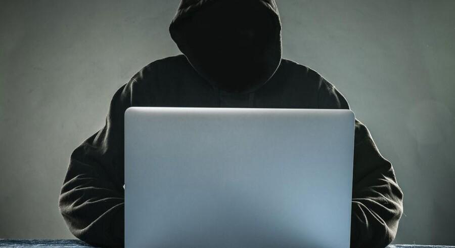 De mange hackersager, hvor offentlige myndigheder er blevet ramt, har presset IT-sikkerhedsspørgsmålet allerøverst på dagsordenen. Arkivfoto: Iris/Scanpix