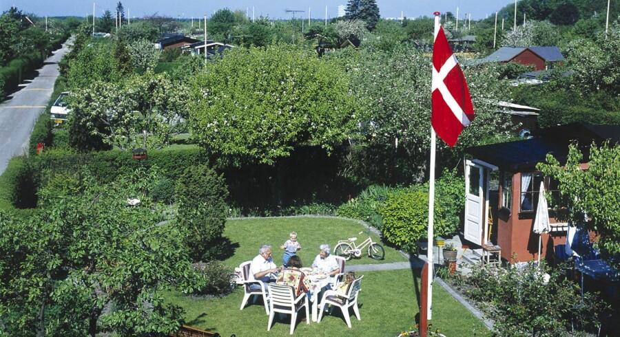 Arkivfoto: »Er man født og opvokset i Danmark, må det forventes, at man erklærer sig som dansker. Det samme med statsborgerskab. Har man valgt det, må det være fordi, man aktivt erklærer sig som dansker,« siger udlændinge- og integrationsminister Inger Støjberg (V) til Berlingske i forbindelse med en ny såkaldt medborgerskabsundersøgelse.