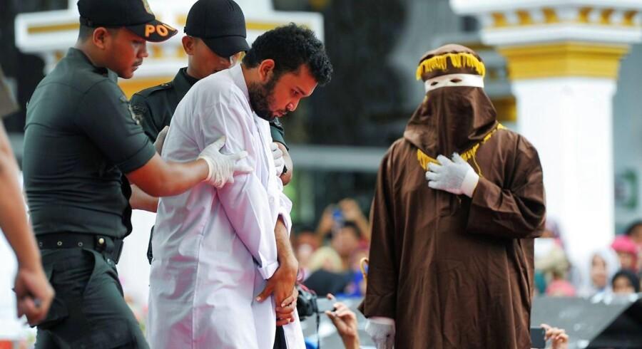 Homoseksuelle i Indonesien er for nylig blevet slået med stok og anholdt for at deltage i en sexfest. Nu kommer det frem at 18 procent af landets unge drømmer om at indføre et kalifat i landet, der i dag har et sekulært styre.